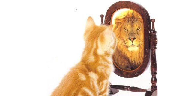 Vad är självinsikt?